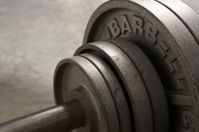 muscle-building plates